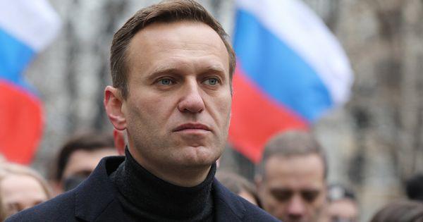 Stop Putin's Terror