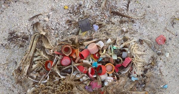 Exija a substituição de uma tampinha e ajude a salvar milhões de aves marinhas
