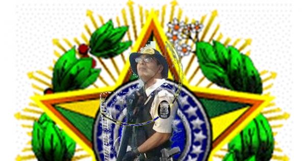 AO SENADO FEDERAL Mudança da categoria e profissão do Vigilante para  Segurança Polícia Privada 529f58c0af