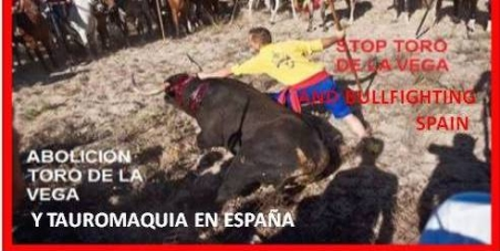 Abolition of all bullfighting festivities in Spain
