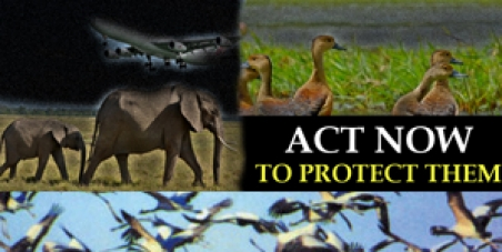 Stop the process of destroying sources of the wildlife in Mattala, Sri Lanka