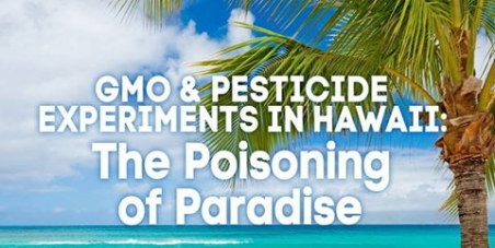 Ban GMO on Hawai'i Island