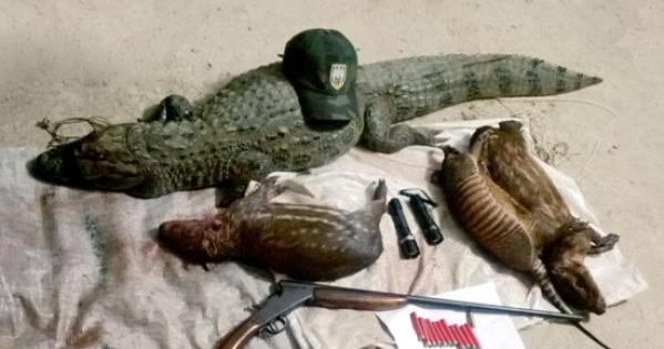 Dep. Federal Valdir Colatto não queremos a caça de animais silvestres