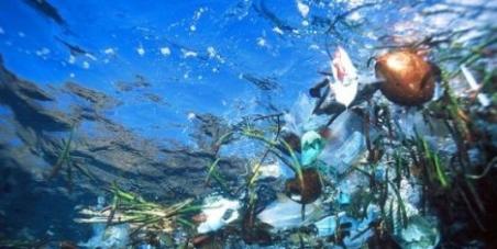 Help to stop plastic waste entering our Oceans by calling for deposits onplastic bottles andbags.