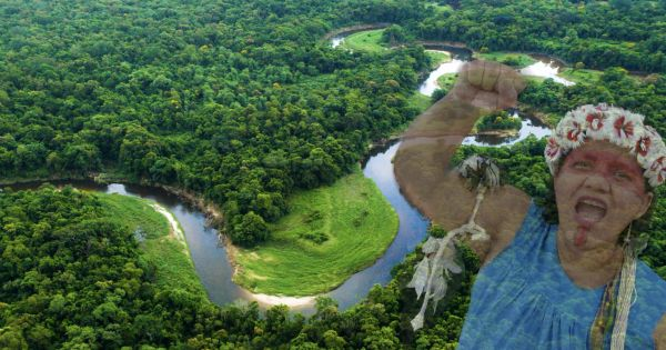 Protect the Amazon and Indigenous rights or face international boycott