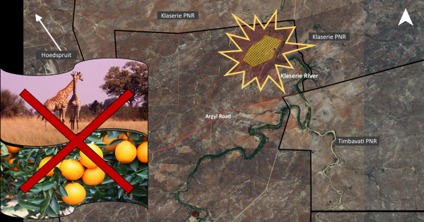 Prevent a citrus development from compromising South Africa's largest Protected Area