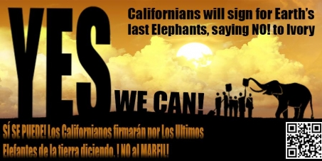 California Governor Jerry Brown & CDFW Director Charlton H. Bonham: End the Ivory Trade in the State of California!