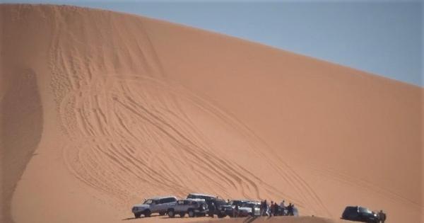 Sauvons les dunes de Merzouga! Sauvons le fennec menacé de disparition par les véhicules à moteur !!