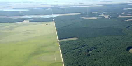Harvard: Stop destroying the Iberá Wetlands!