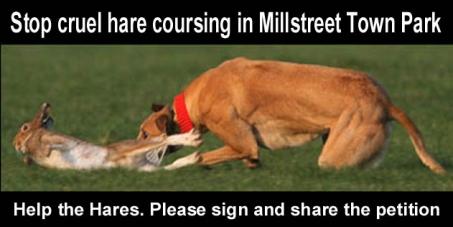 Millstreet Town Park Committee: Stop cruel hare coursing in Millstreet Town Park