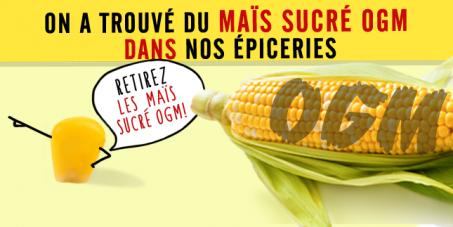 Retirez le maïs sucré OGM !