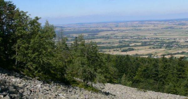 Sprzeciw wobec zmniejszenia Świętokrzyskiego Parku Narodowego