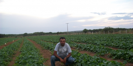 Alimentos saudáveis para o Brasil e para o Mundo