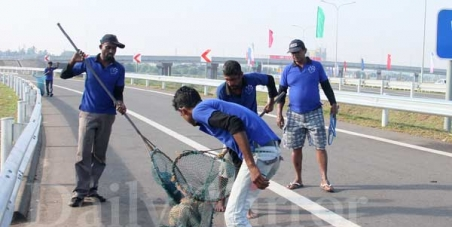 To Keep the stray dogs who were removed from the Colombo Katunayake Highway safe, unharmed & relocated, after CHOGM.