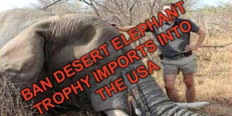 Director: Daniel M Ashe : USFWS & John E. Scanlon, CITES Secretary-General: BAN USA TROPHY IMPORTS of the UNIQUE