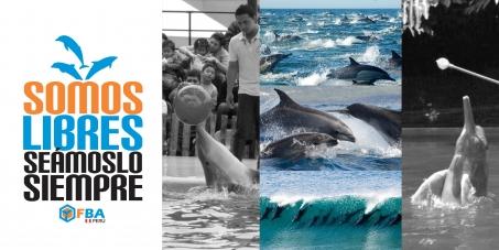 """Por un Perú sin delfines en cautiverio - """"Somos libres, seámoslo siempre"""""""