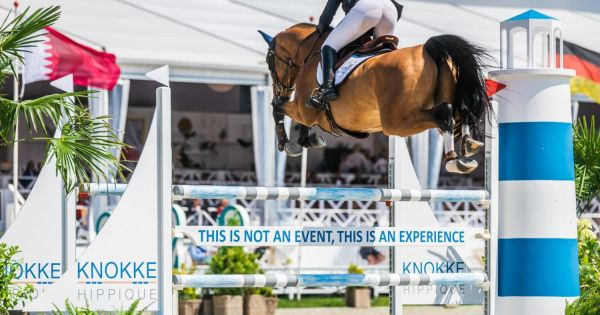 Open Letter of Stephan Conter to the FEI about the New Entry System 2* and 3* Competitions