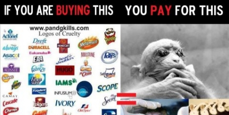 Stop P & G form torturing & testing their products on animals.