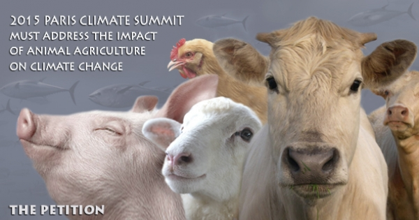 2015 UN Climate Conference must address the impact of animal agriculture on climate change
