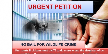 NO BAIL FOR ACCUSED - WILDLIFE CRIMES