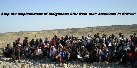 Stop the displacement of Indigenous Afar from their home land in Eritrea!