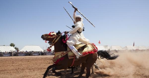 Signez pour inscrire la Tbourida au Patrimoine culturel de l'UNESCO !