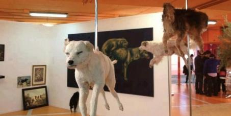 Cierre de la exposición de cadáveres de animales callejeros de Vitor Mizael
