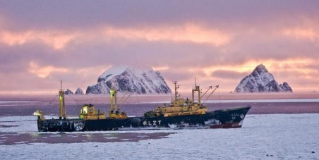 Urge WWF to stop supporting the krill fishery in the Antarctic