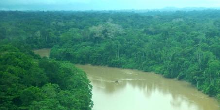 Valora la Naturaleza como Ser vivo y respeta los Derechos de la Madre Tierra