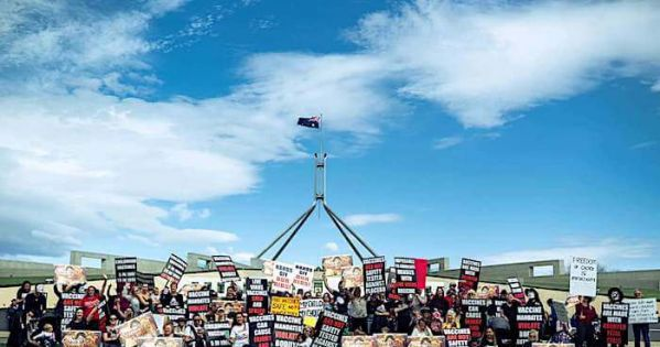 Hold an Australian Government Vaccine Policy Enquiry and/or Royal Commission