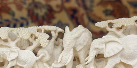 PROIBIÇÃO DO COMÉRCIO DE QUAISQUER OBJETOS DE MARFIM NO BRASIL(stop the ivory trade in Brazil)