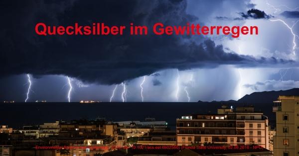 Gegen jegliche Behinderung der Quecksilber Entgiftung!  Petition an Prof. Dr. Karl Broich (BfArM), Hermann Gröhe (BMG), Anton Hofreiter (Grüne)