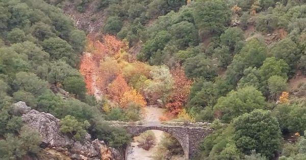 Περιφέρεια Πελοποννήσου : Σώστε το γεφύρι του Δρακοβουνίου