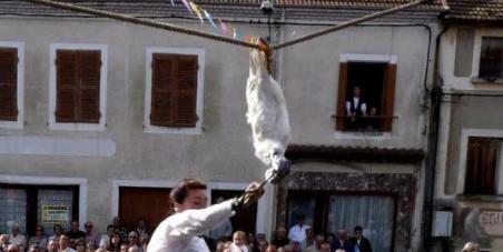 à Aurélie Filippetti, ministre de la Culture : STOP au SABRAGE INUTILE d'une pauvre OIE à Arfeuilles (03) !