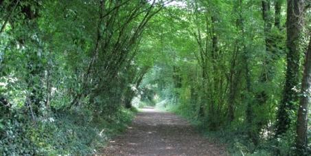A TOUS LES HABITANTS DE DORDOGNE: Sauvez nos chemins, nos forêts et nos campagnes