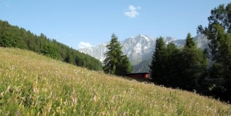 Arrêt des dépenses pour la ligne Lyon Turin, investissement sur d'autres projets utiles