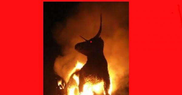 STOP burning bulls ALIVE at the Bull Jubilee in Spain