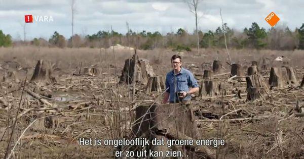 Nederlanders: Subsidie op biobrandstof, nee bedankt!