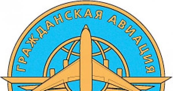 Президенту Российской Федерации Путину Владимиру Владимировичу: спасите российскую гражданскую авиацию!