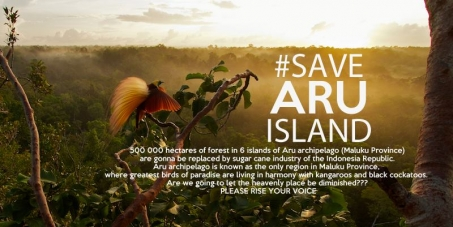 Save Aru Islands from Deforestation & Exploitation!