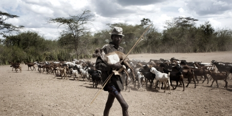 For a sustainable future, support small-scale livestock farmers