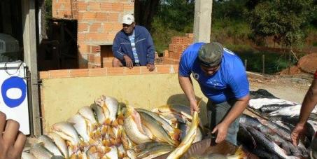 Mudança e proibição imediata nas leis de Minas Gerais para a proteção dos peixes que vivem em nosso lagos e rios.