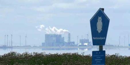 Quecksilber verseucht Wattenmeer - Stoppt RWE Kohlekraftwerk