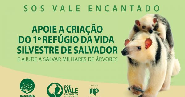 Assine a petição e ajude a salvar o Vale Encantado!