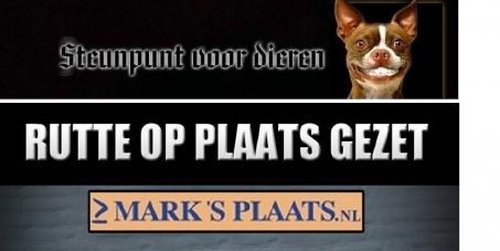de petitie zullen we overhandigen aanMarianne Thieme