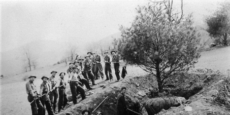 Re-establish the Civilian Conservation Corps!