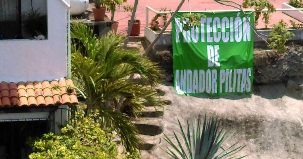 Neighbors, residents tourists of Puerto Vallarta : Save our Calle Pilitas Stairway! Guarde nuestra Anador