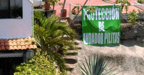 Neighbors, residentstourists of Puerto Vallarta :Save our Calle Pilitas Stairway!Guarde nuestra Anador