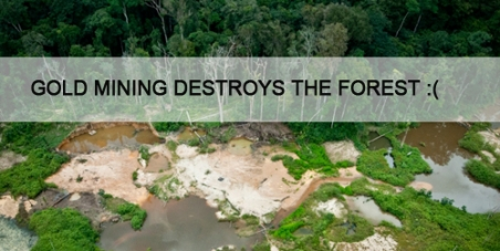 Stop Gold Mining in the National Park of French Guiana