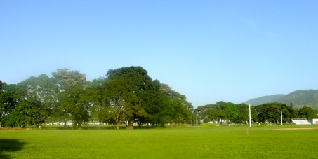 SAVE OUR ORANGE GROVE SAVANNAH, TACARIGUA, TRINIDAD.  A TINY GREEN SPACE IN A CROWDED URBAN AREA - KEY NATIONAL AQUIFER